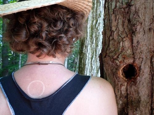L1000358  Linnea, tree, tattoo