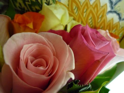 fresh blooms