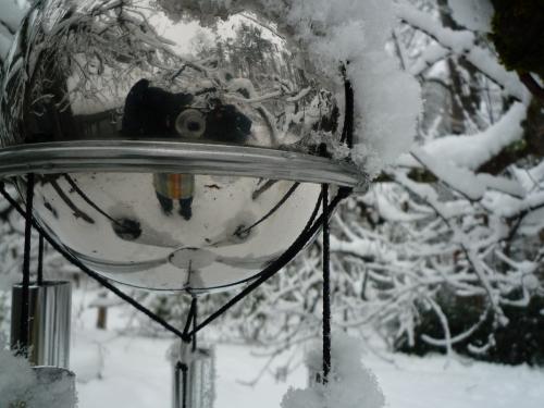 Winter close-up